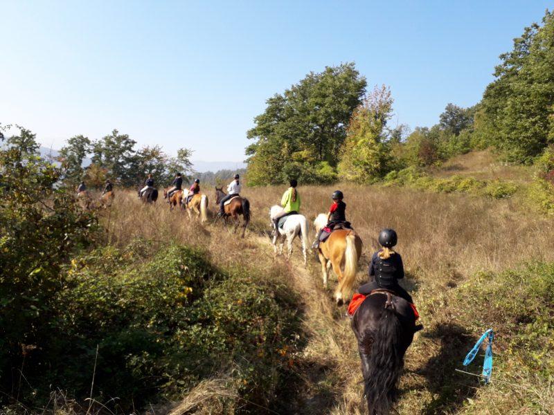Escursione a cavallo - Cooperativa 100 Laghi 04