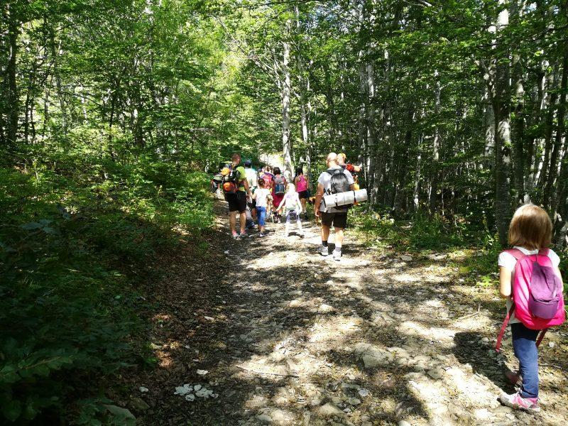 Escursione a piedi - Cooperativa 100 Laghi 02