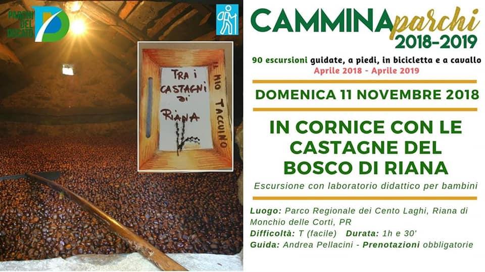 La cornice del Bosco di Riana, Escursione con laboratorio didattico organizzato dalla Cooperativa 100 Laghi di Corniglio