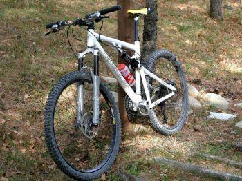 Escursioni in bicicletta organizzate dalla Cooperativa 100 Laghi di Corniglio